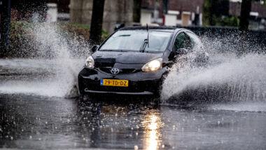 auto regen
