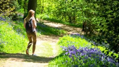 Zo maakt u uw dagelijkse wandeling nog leuker!